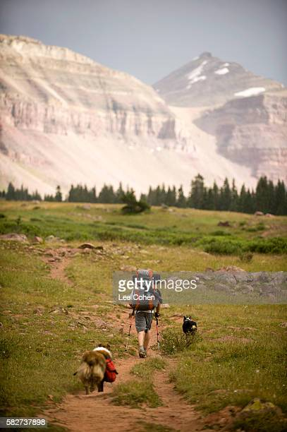 Backpacker and two dogs