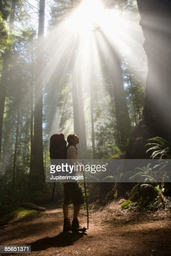 Backpacker in woods with rays of sunlight
