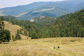 backpackers hiking mountain szczawnica