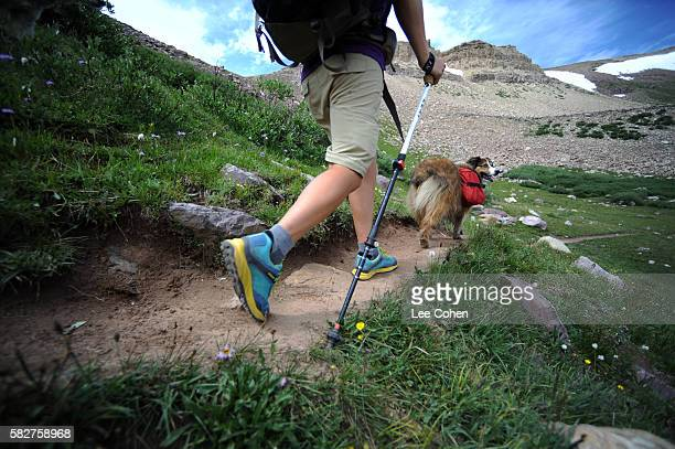 Backpackers legs and dog