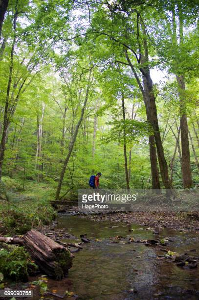Backpacking West Rim Trail Pennsylvania