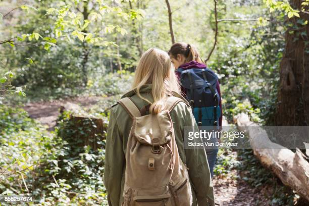 Backview of women hiking in forest.