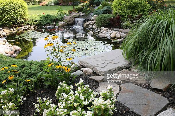 backyard pond and waterfall