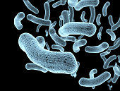 Bacteria and bacterium cells medical illustration of bacterial disease infection