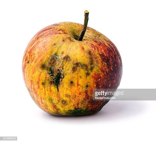 Ein fauler Apfel