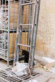 Bad Luck - Black Cat Under a Ladder