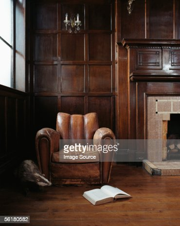 Badger emerging form behind armchair