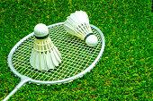 Badminton ball on grass