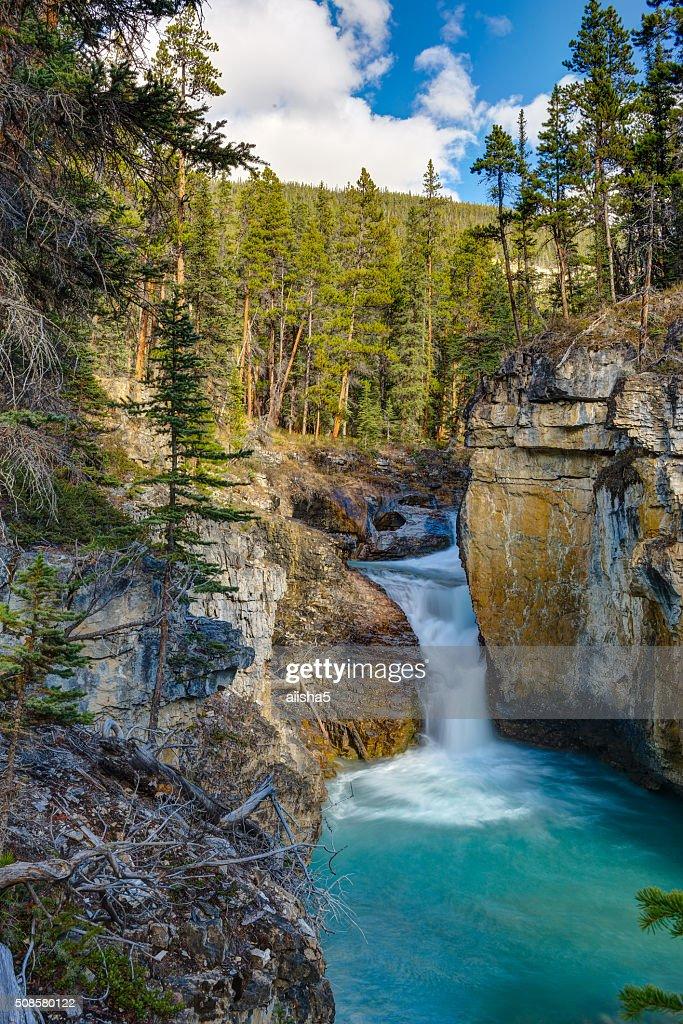 Baeuty Creek Falls : Photo