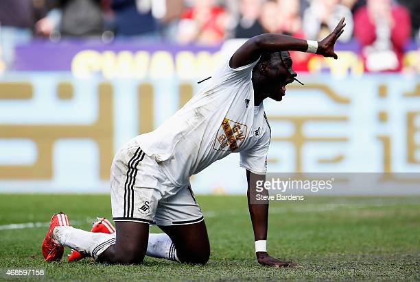 Bafetimbi Gomis of Swansea City celebrates his second goal during the Barclays Premier League match between Swansea City and Hull City at Liberty...