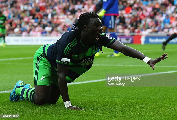 Bafetimbi Gomis of Swansea City celebrates scoring his team's first goal during the Barclays Premier League match between Sunderland and Swansea City...