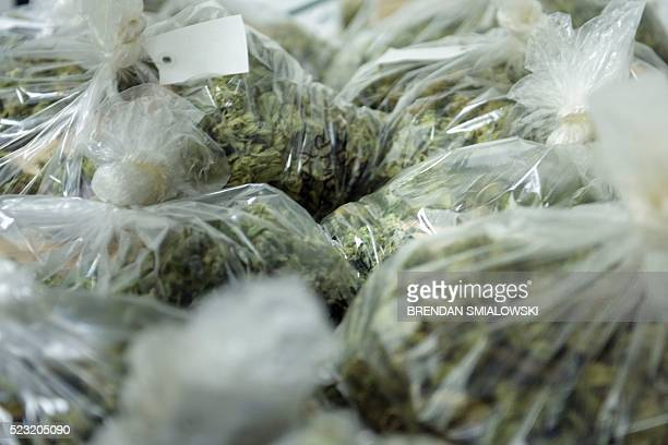 Bags of buds from marijuana plants are seen at Alternative Solutions a DC area medical marijuana producer April 20 2016 in Washington DC / AFP /...