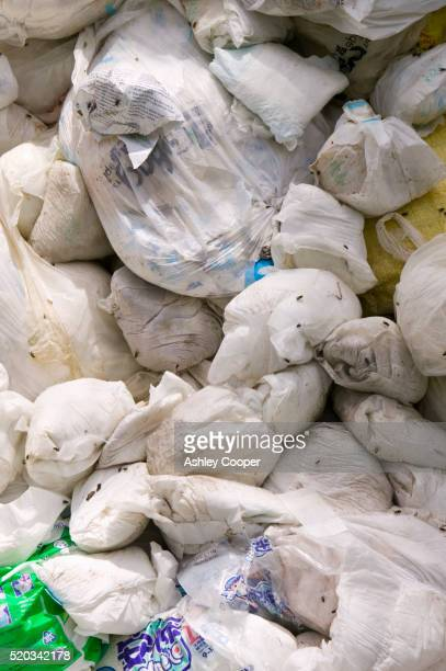Bags of Disposable Diapers at Dump