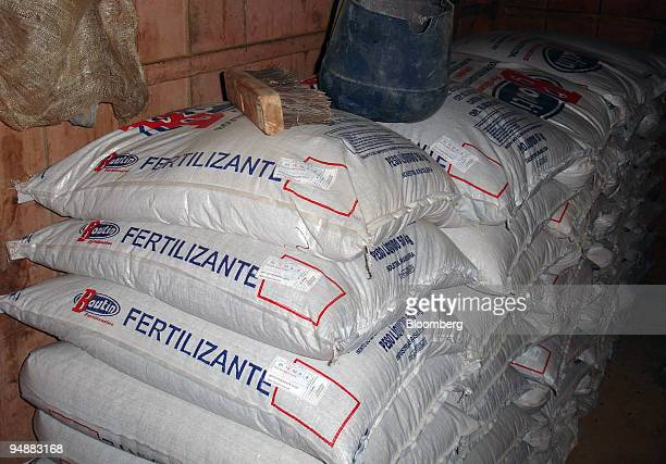 50 bags of fertilizer sit in storage on the farm of Martim Mordaski Klemba in Lapa Brazil on July 3 2008 Klemba says the high fertilizer price is...