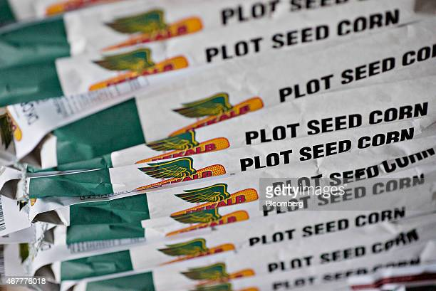 Bags of Monsanto Co DeKalb brand plot seed corn sit in a stack in a warehouse at the Crop Protection Services facility in Manlius Illinois US on...
