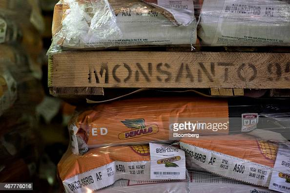 Bags of Monsanto Co DeKalb brand seed corn sit in a stack in a warehouse at the Crop Protection Services facility in Manlius Illinois US on Friday...