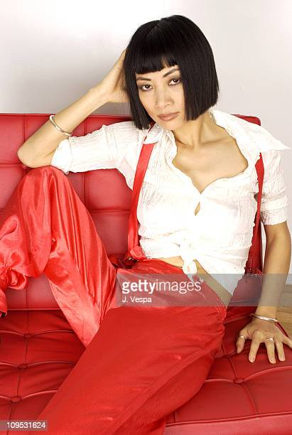 Bai Ling during 2003 Tribeca Film Festival 'Paris' Portraits at WireImage Portrait Studio Michael Perez Pop Art Gallery in New York New York United...