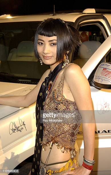 Bai Ling during The 9th Annual Race to Erase MS CoChaired by Nancy Davis Tommy HilfigerSilent Auction at The Century Plaza Hotel in Century City...