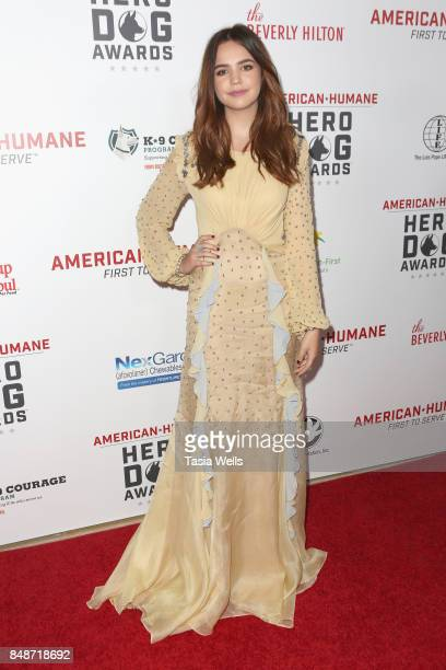 Bailee Madison at the 7th Annual American Humane Association Hero Dog Awards at The Beverly Hilton Hotel on September 16 2017 in Beverly Hills...
