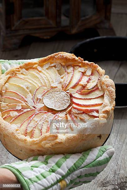 Baked apple pie sprinkled with icing sugar