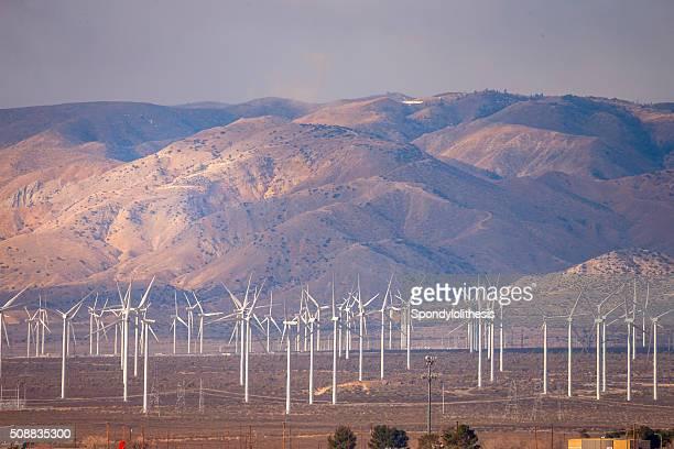 Bakersfield Wind Farm under Fog