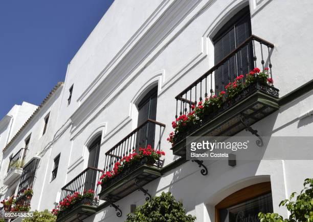 Balconies with flowers in Vejer de la Frontera
