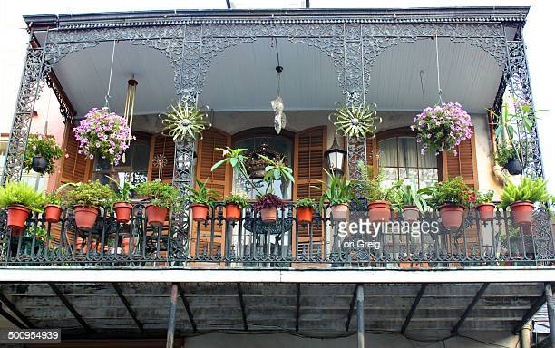 Balcony garden with many plants and flier baskets in New Orleans