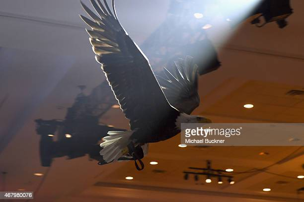 A bald eagle flies over the audience during Muhammad Ali's Celebrity Fight Night XXI at the Jw Marriott Phoenix Desert Ridge Resort Spa on March 28...