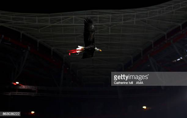 A bald eagle mascot of Benfica during the UEFA Champions League group A match between SL Benfica and Manchester United at Estadio da Luz on October...