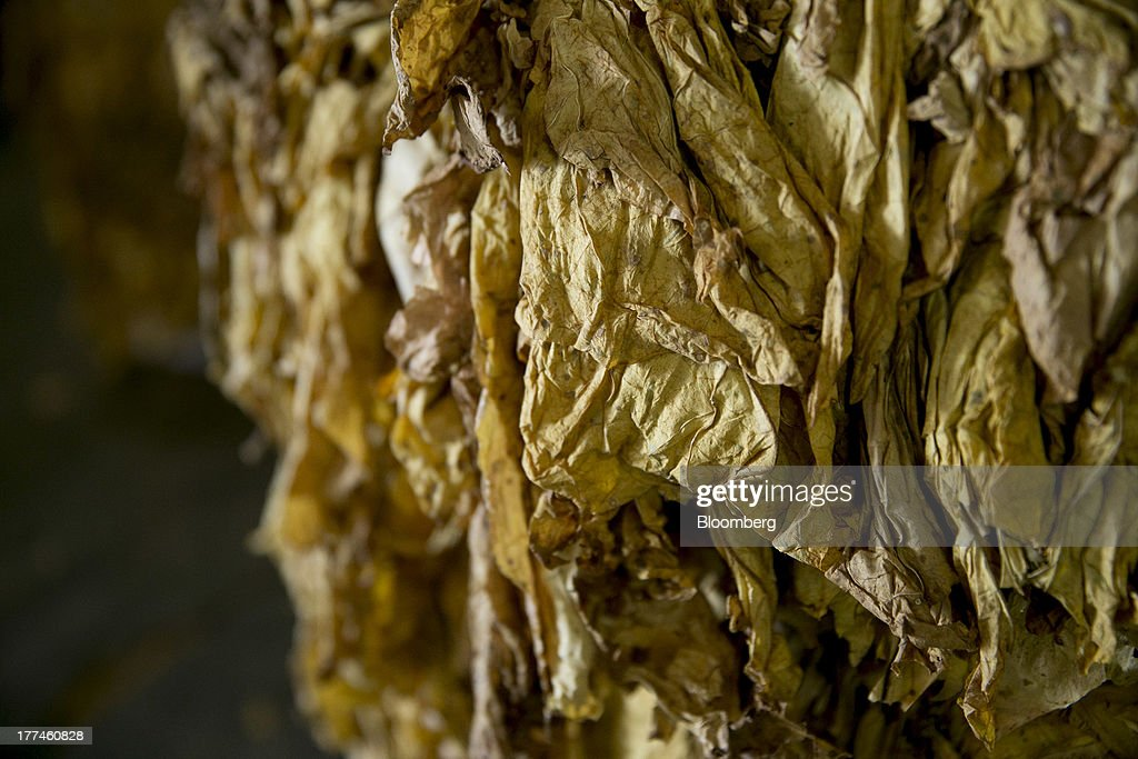 A bale of flue-cured tobacco sits on the floor following an auction at the Old Belt Tobacco Sales warehouse in Rural Hall, North Carolina, U.S., on Tuesday, Aug. 20, 2013. President Barack Obama's proposal in April to raise federal excise taxes on cigarettes by about 93%, to $1.95 a pack, is not likely to gain political support, due in part to weak consumer spending amid sluggish wage growth in recent years. Photographer: Andrew Harrer/Bloomberg via Getty Images