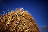 Bales of hay sit in field waiting to be harvested on August 23 2010 in Stafford United Kingdom Farmers are reporting an increase in rural theft of...
