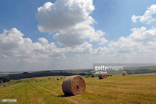 Bales of hay standing in a field on a hot summer's day in Salisbury Plain Wiltshire Bale farm summer landscape landscapes rural cumulus cloud clouds...