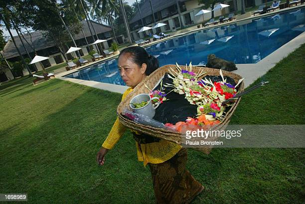 Balinese villager carries offerings made from palm leaves and flowers to be placed at small shrines and at all of the entrances at the Chedi Hotel...