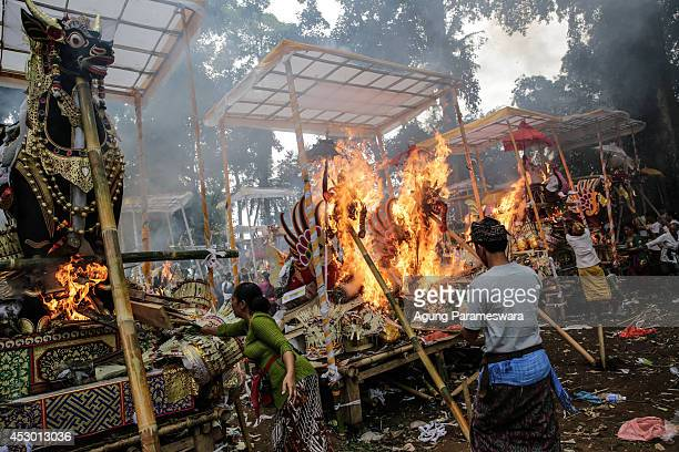 Balinese woman throws offerings to a sarcophagus in the shape of buffalo during Balinese Hindu mass cremation on August 1 2014 in Ubud Bali Indonesia...