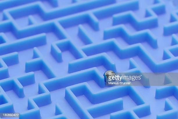 Ball in a maze, symbolic picture for finding a way out