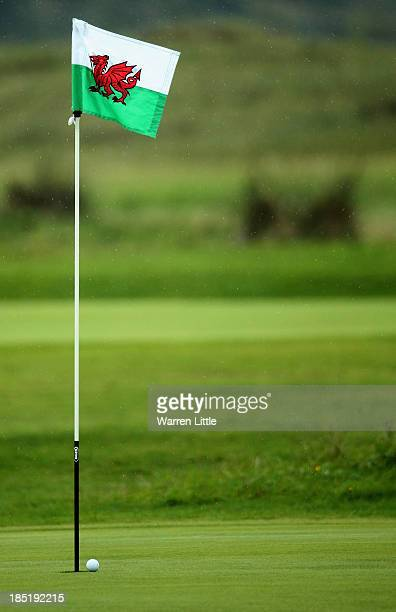 A ball is chipped close to the hole during the Welsh National PGA Championships at St David's Golf Club on October 18 2013 in Portmadog Wales