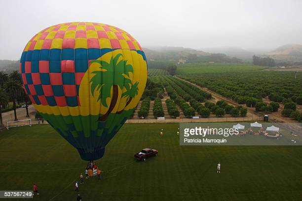 Balloon handlers prepare a balloon for flight just after sunrise on August 1 at the Citrus Classic Hot Air Balloon Festival in Santa Paula California...