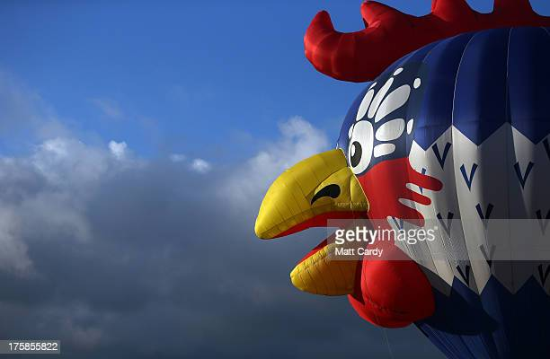 A balloon in the shape of a cartoon bird is inflated and tethered at the Bristol International Balloon Fiesta at the Ashton Court estate on August 9...