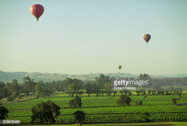 Ballooning Over the Napa Valley