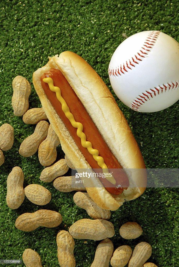 Ballpark food : Stock Photo