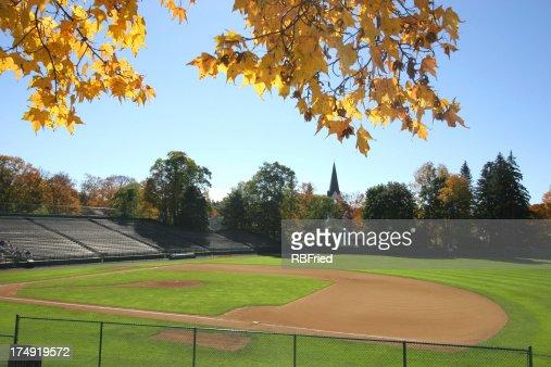 Ballpark : Stock Photo
