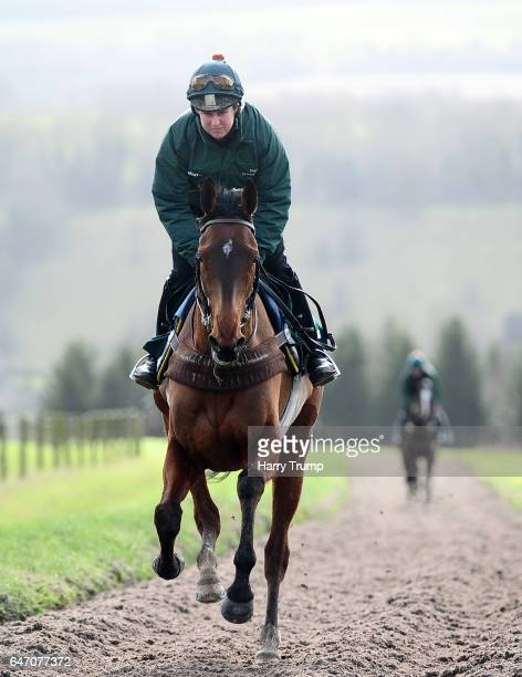 Ballyandy makes its way up the gallops during a Nigel TwistonDavies Stable Visit at Grange Hill Farm on March 2 2017 in Naunton England