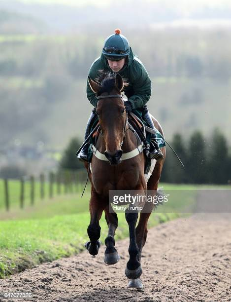 Ballyoptic makes its way up the gallops during a Nigel TwistonDavies Stable Visit at Grange Hill Farm on March 2 2017 in Naunton England