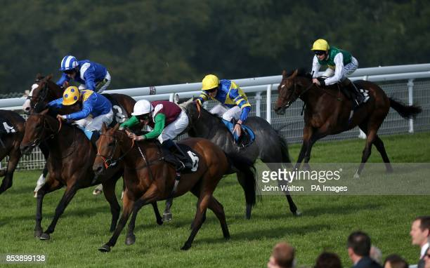 Balmoral Castle ridden by Ned Curtis comes home to win The Oldham Seals 50th Anniversary Handicap at Goodwood Racecourse Chichester