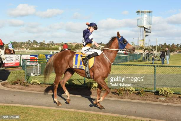 Baltic Amber ridden by Ben Allen returns after the Grahams Cleaning Services BM64 Handicap at Warrnambool Racecourse on August 24 2017 in Warrnambool...
