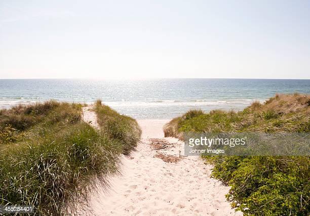 Baltic Sea coastline