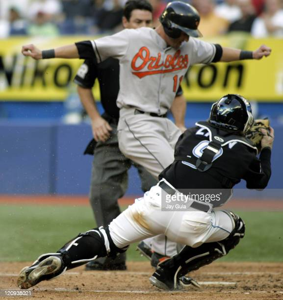 Baltimore Orioles David Newhan is tagged out at home by Toronto catcher Greg Zaun in MLB action at the Rogers Centre in Toronto on June 23 2005