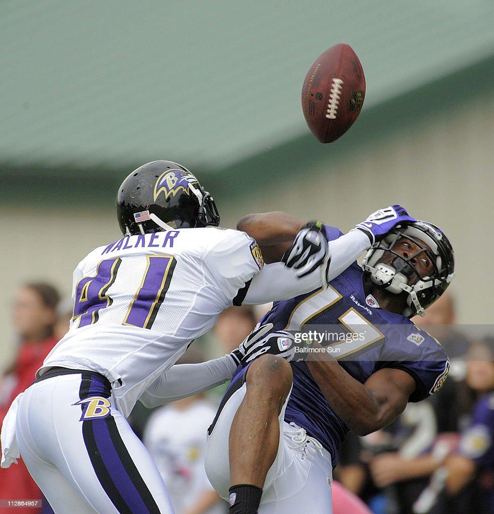 Baltimore Ravens Hammer