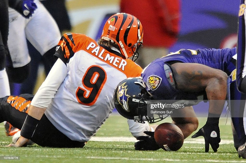Baltimore Ravens' Ray Lewis, right, recovers a fumble by Cincinnati Bengals quarterback Carson Palmer, left, in the fourth quarter. The Ravens defeated the Bengals, 13-7, on Sunday, January 2, 2011, at M&T Bank Stadium in Baltimore, Maryland.