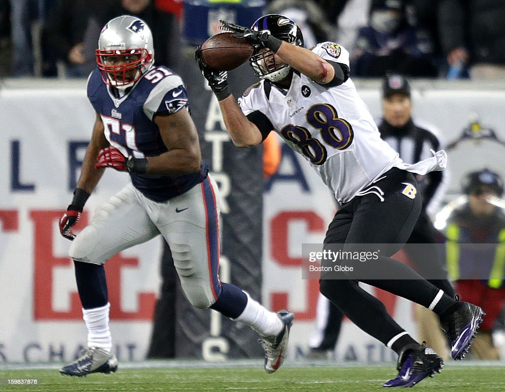 Baltimore Ravens tight end Dennis Pitta (#88) pulls in a pass in front of New England Patriots outside linebacker Jerod Mayo (#51) during the third quarter as the New England Patriots hosted the Baltimore Ravens in the AFC Championship Game at Gillette Stadium.